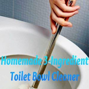 homemade-cleaning-recipe-toilet-bowl